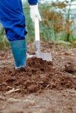 Feche acima de um solo de escavação do homem Imagem de Stock