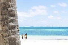 Feche acima de um tronco da palma, de um oceano de turquesa e de umas meninas 'sexy' do biquini Fotos de Stock