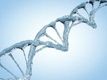 Feche acima de uma corrente diagonal do ADN da água 3d ilustração stock