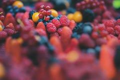 Feche acima de uma seleção de bagas brilhantes do fruto fresco - inclui a morango, mirtilo, framboesa, Blackberry, vermelho imagem de stock
