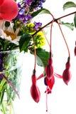 Feche acima do arranjo de flor Imagem de Stock Royalty Free