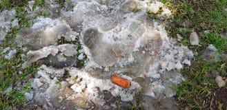 Feche acima do boneco de neve derretido e da sua cenoura na grama verde na mola imagem de stock