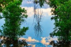 Feche acima do céu, da nuvem e da inundação do Rio Missouri das reflexões da árvore em 2019 do parque da borda de Tom Hanafan Riv foto de stock royalty free