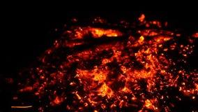 Feche acima do carvão de madeira do fogo ardente quente video estoque