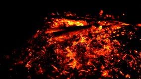 Feche acima do carvão de madeira do fogo ardente quente vídeos de arquivo