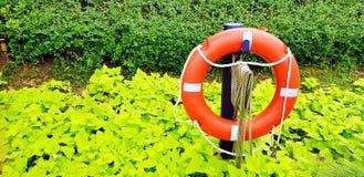Feche acima do colete salva-vidas de borracha alaranjado no jardim com fundo verde de muitas folhas e copie o espaço fotografia de stock