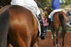 Feche acima do detalhe de jóquei no cavalo de raça Fotografia de Stock