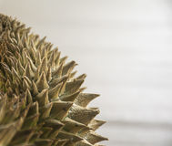 Feche acima do durian Fotografia de Stock Royalty Free