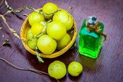 Feche acima do emblica cru de Phyllanthus ou da baga indiana do ganso em uma cesta com seu óleo imagem de stock royalty free