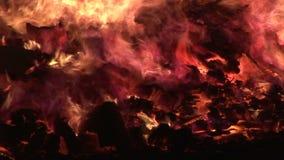 Feche acima do fogo que queima-se no fumo e em logs pretos do fundo video estoque