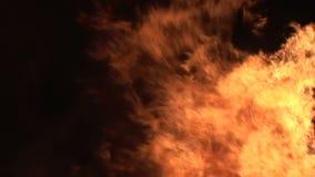 Feche acima do fogo que queima-se no fundo preto vídeos de arquivo