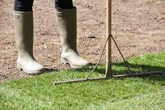 Feche acima do gramado novo de Laying Turf For do jardineiro de paisagem fotografia de stock