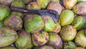 Feche acima do grupo de cocos verdes junto com a faca Aruval no tamil, Chennai, Índia, o 19 de fevereiro de 2017 Imagem de Stock Royalty Free