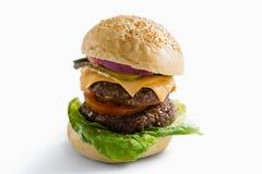 Feche acima do Hamburger com queijo e vegetais Fotografia de Stock Royalty Free