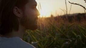 Feche acima do homem considerável com a barba com paisagem da natureza no por do sol/nascer do sol filme