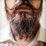 Feche acima do homem longo da barba e do bigode foto de stock