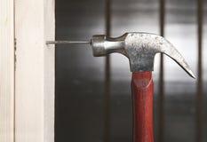 Feche acima do homem que bate o prego pelo martelo Fotografia de Stock Royalty Free