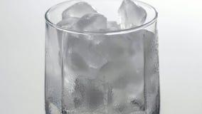 Feche acima do lapso de tempo do gelo que derrete no vidro Tiro macro de uma bebida fria filme