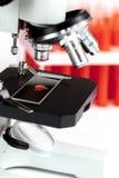 Feche acima do microscópio macro com a amostra de sangue no fundo branco fotografia de stock