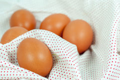 Feche acima do ovo Fotos de Stock