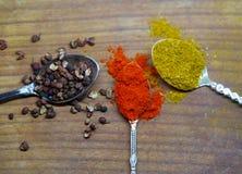 Feche acima do pó do caril, da pimenta e da paprika Imagem de Stock