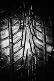 Feche acima do pneumático Imagem de Stock Royalty Free