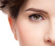Feche acima do retrato do olho da mulher da beleza imagem de stock royalty free