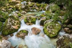 Feche acima do rio Lepenjica no coração do vale de Lepena, Eslovênia fotografia de stock
