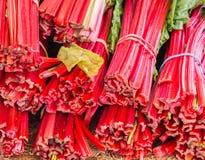 Feche acima do ruibarbo vermelho brilhante com folhas verdes foto de stock