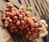 Feche acima do tempero na cesta, Tailândia Imagem de Stock