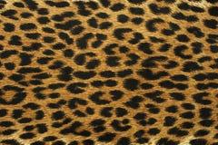 Feche acima do teste padrão do ponto do leopardo Foto de Stock