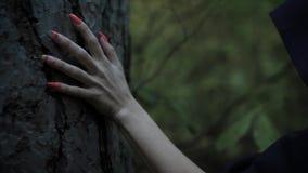 Feche acima do tiro da mão com unhas longas, uma mulher em toques pretos de um casaco a casca de uma árvore na noite filme