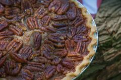 Feche acima do tiro de refrigerar do tarte de pecan Tarte de pecan caseiro clássico americano Tortas de Amish Guardanapo uma band fotos de stock royalty free