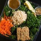 Feche acima do tiro de uma salada verde saudável Imagens de Stock Royalty Free