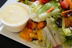 Feche acima do tiro de uma salada verde saudável Imagem de Stock