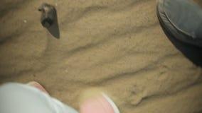 Feche acima do tiro dos pés do ` s da mulher nas sapatilhas brilhantes, que pisaram lentamente na areia molhada, provavelmente ao filme
