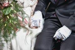 Pares do casamento que guardaram as mãos Imagens de Stock Royalty Free