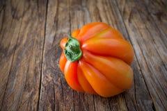Feche acima do tomate cru chamado lareira do boi fotografia de stock