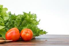 Feche acima do tomate, do iceberg franzido e do carvalho verde no backgr branco Foto de Stock