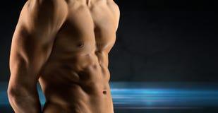 Feche acima do torso desencapado do halterofilista masculino fotografia de stock