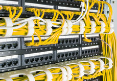 Feche acima dos cabos amarelos da rede conectados ao interruptor Foto de Stock Royalty Free