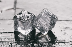 Feche acima dos cubos de gelo Fotos de Stock Royalty Free