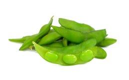 Feche acima dos feijões da soja de Edamame, feijões de soja verdes no backgroun branco foto de stock