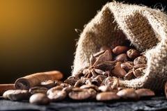 Feche acima dos feijões de café em um saco com canela e badian Fotografia de Stock
