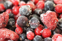 Feche acima dos frutos misturados congelados - bagas Imagens de Stock