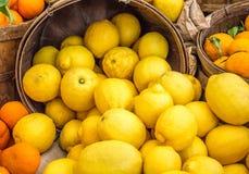 Feche acima dos limões e das laranjas coloridos brilhantes em umas cubetas de madeira Imagem de Stock