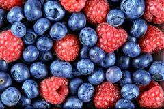 Feche acima dos mirtilos e das framboesas orgânicos frescos Ricos com vitaminas fundo, textura Fotos de Stock Royalty Free