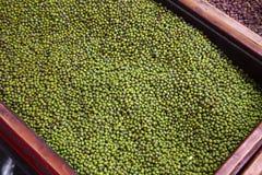Feche acima dos muitos o feijão verde Foto de Stock