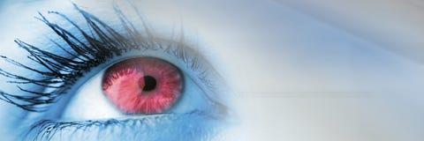 Feche acima dos olhos azuis com íris cor-de-rosa e transição esperta azul da tecnologia Fotos de Stock Royalty Free