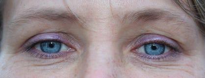 Feche acima dos olhos azuis fêmeas Face da mulher nova Foto de Stock